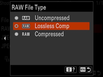 """RAW File Type"" camera menu with cursor on ""Lossless Comp"""