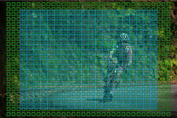 AF sensor regions covering almost the entire image